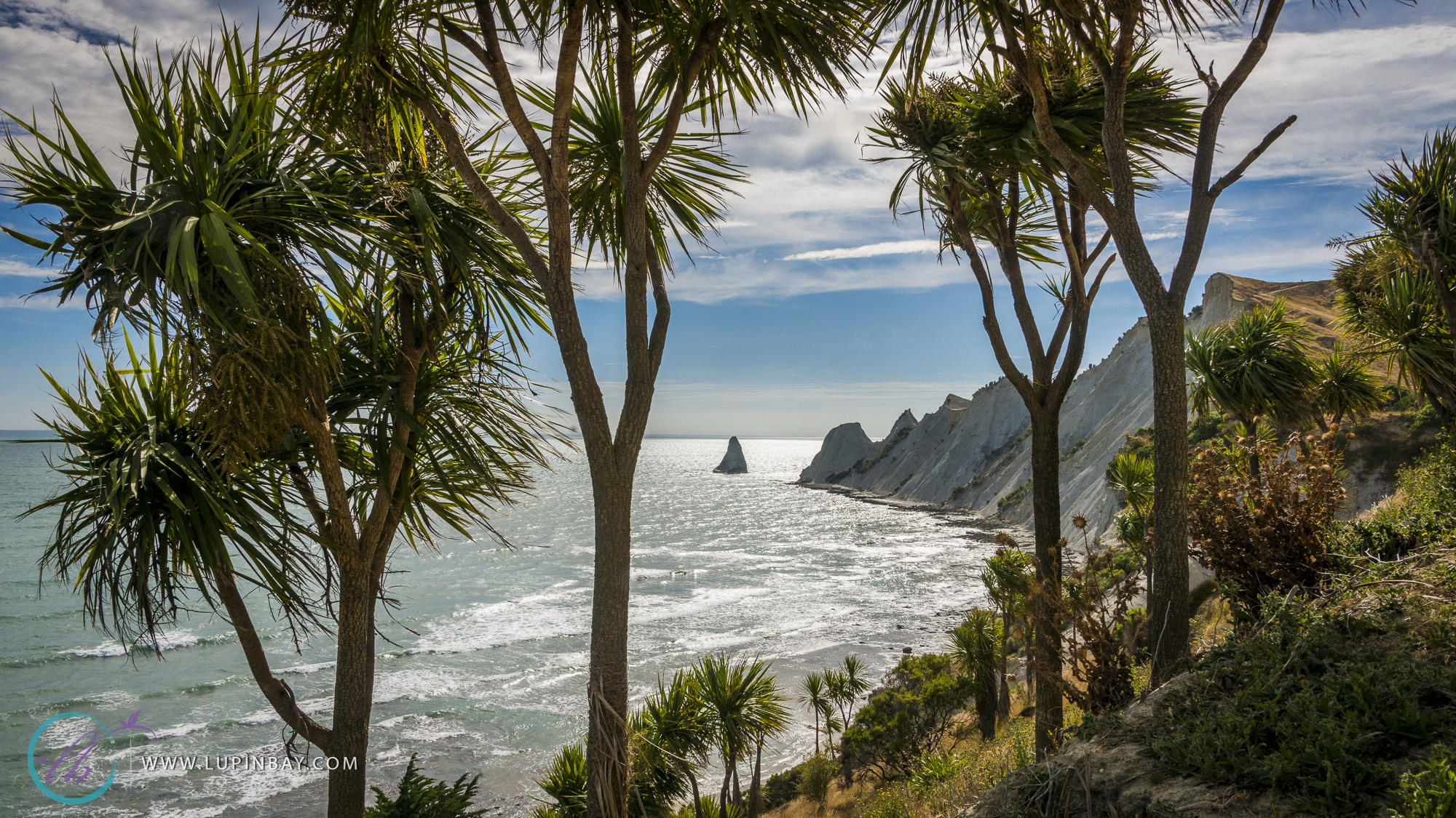 LupinBay_Cape_Kidnappers_0797