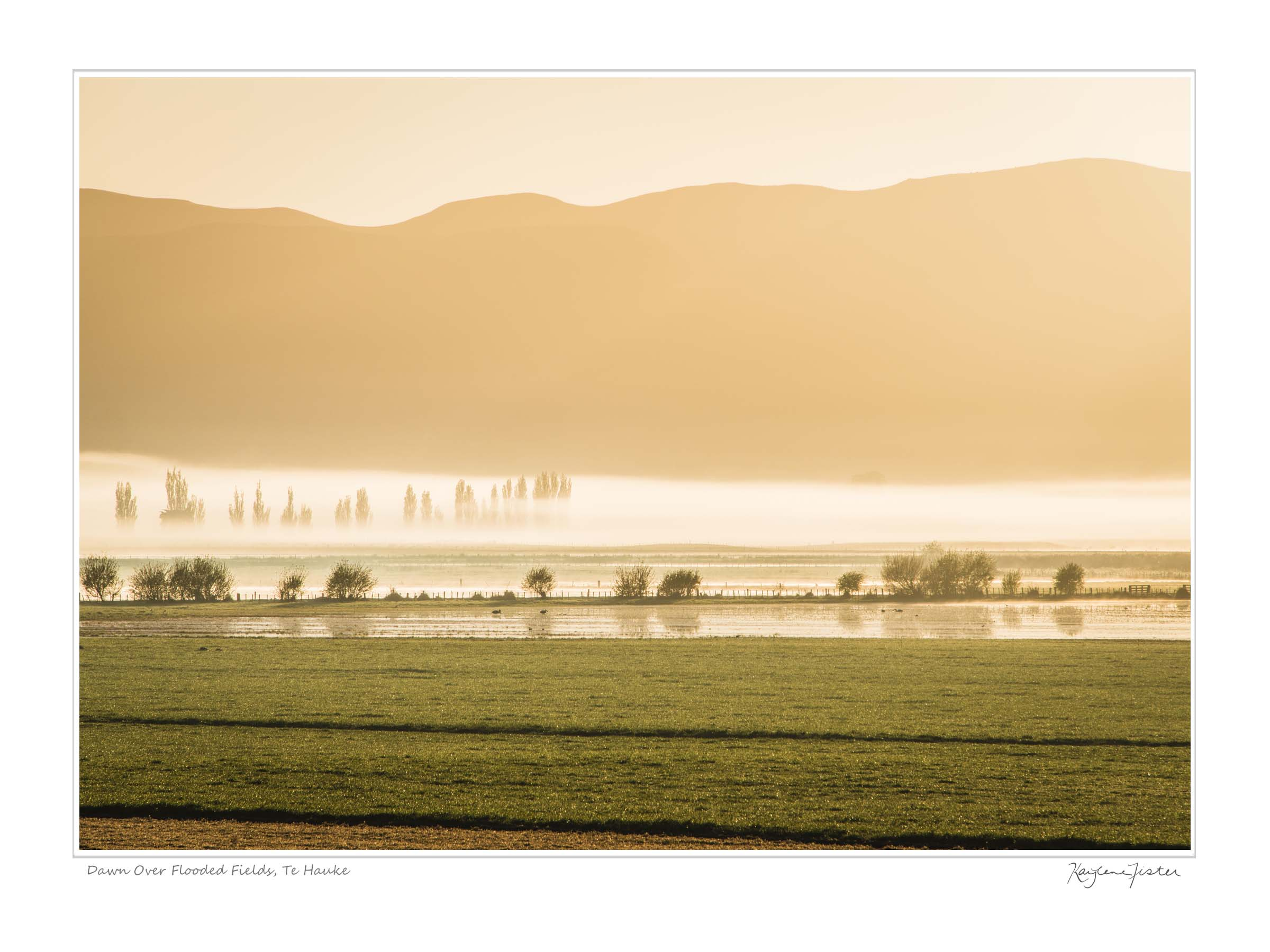 0061:4394 Dawn Over Flooded Fields, Te Hauke
