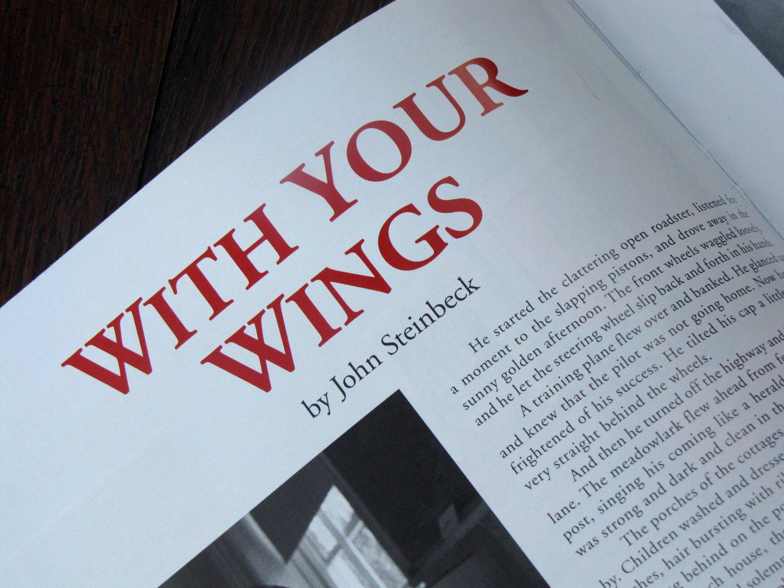 Withyourwing.jpg