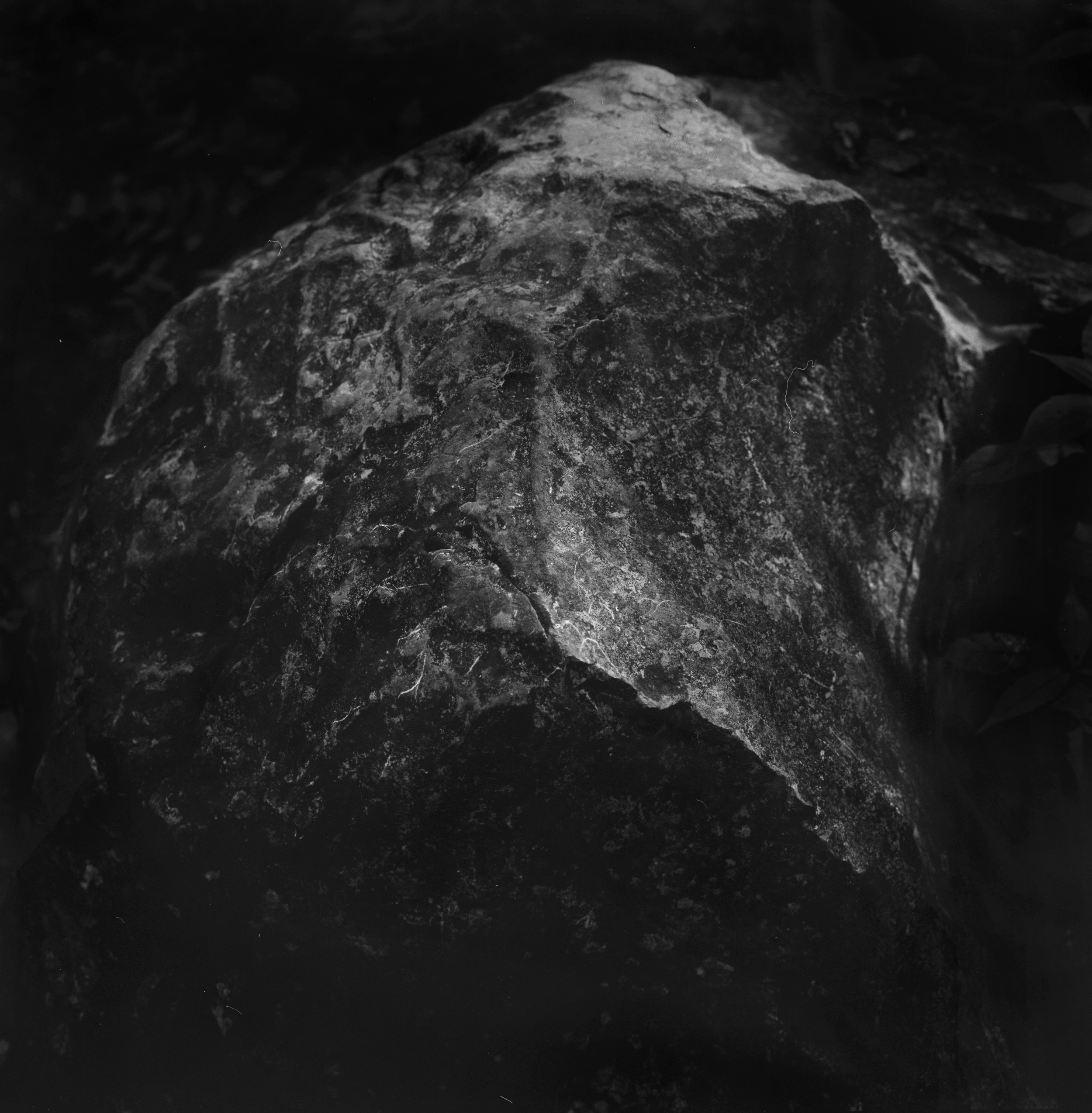 The Insistent Dust / 不終日則貞吉- 2015