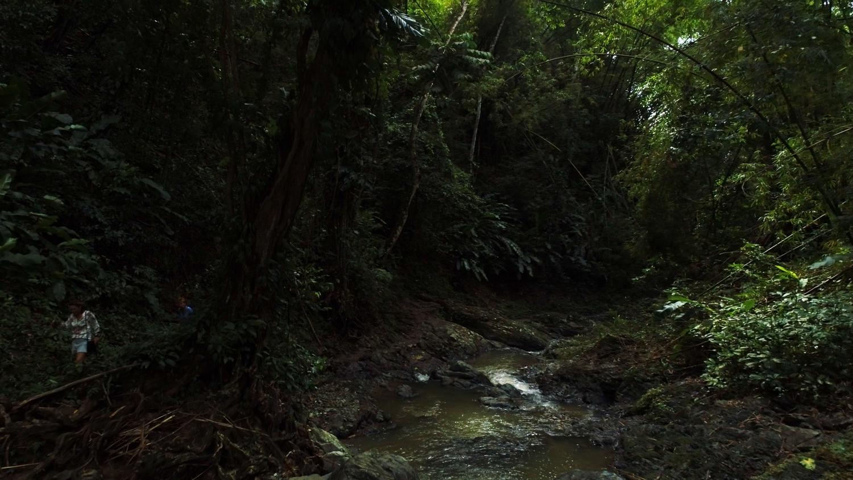 Tobago-InLove-Screen-Stills_12.3.1.jpg
