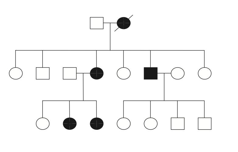 Familienbaum: Schwarze Symbole repräsentieren Hyperhidrose-Betroffene. Quelle: Kaufmann (2003)