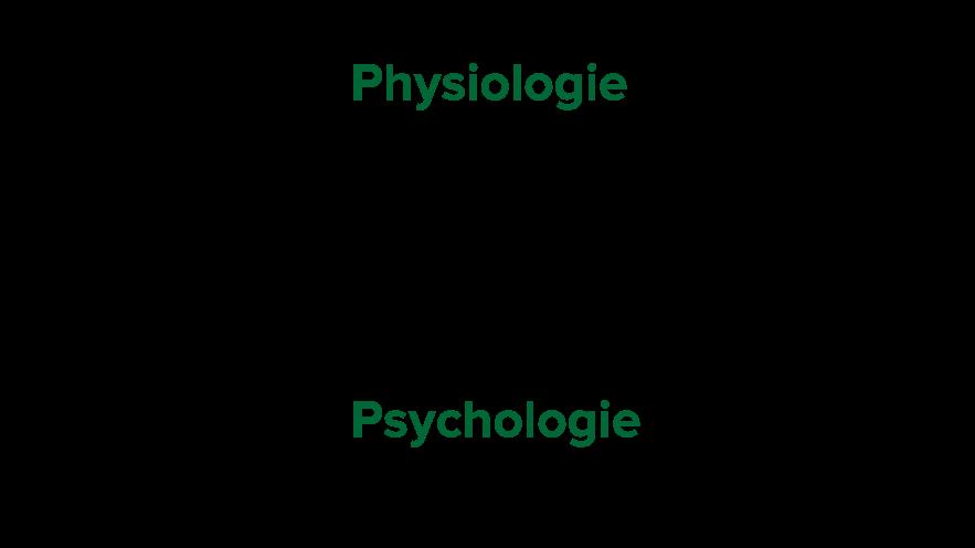 Ständige gegenseitige Beeinflussung - Körper und Geist