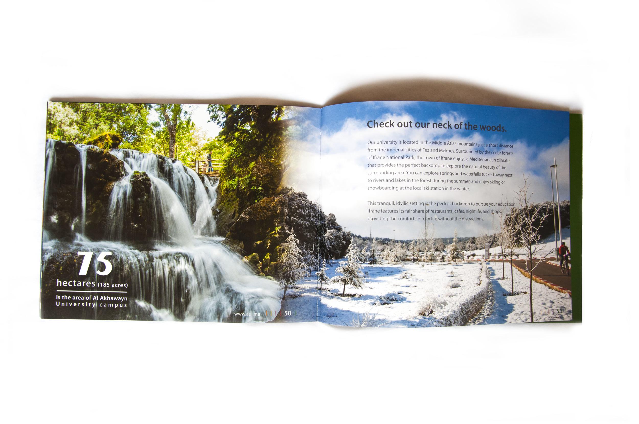 Brochure_0000_Layer 3.jpg