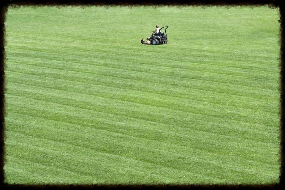 lawn-services.jpg