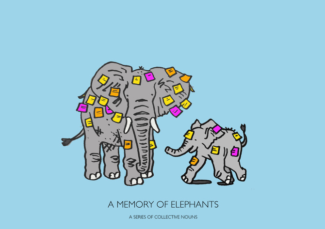 A-MEMORY-OF-ELEPHANTS-JPEG_670.jpg