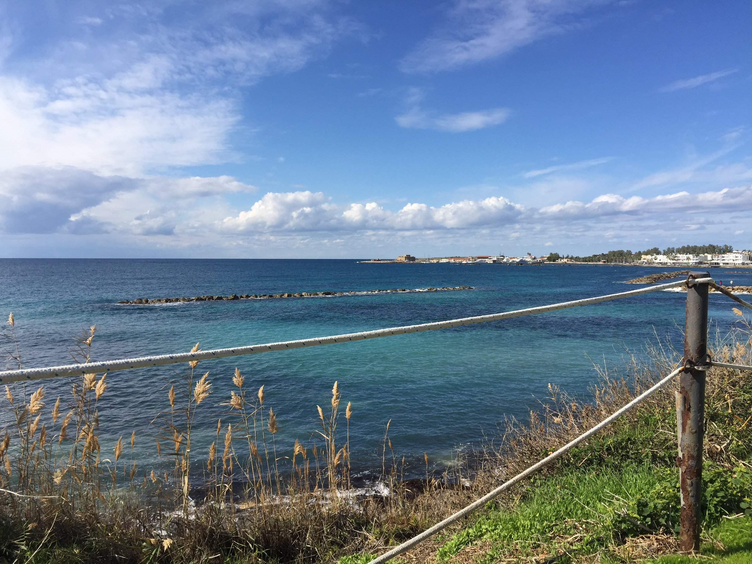 ProACT Oversea Property Investors