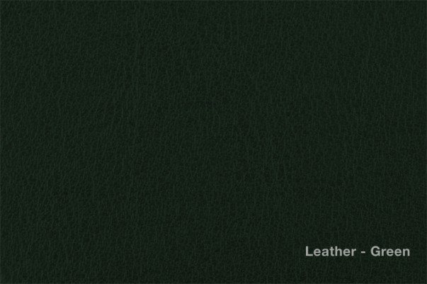 Leatherette Green.jpg