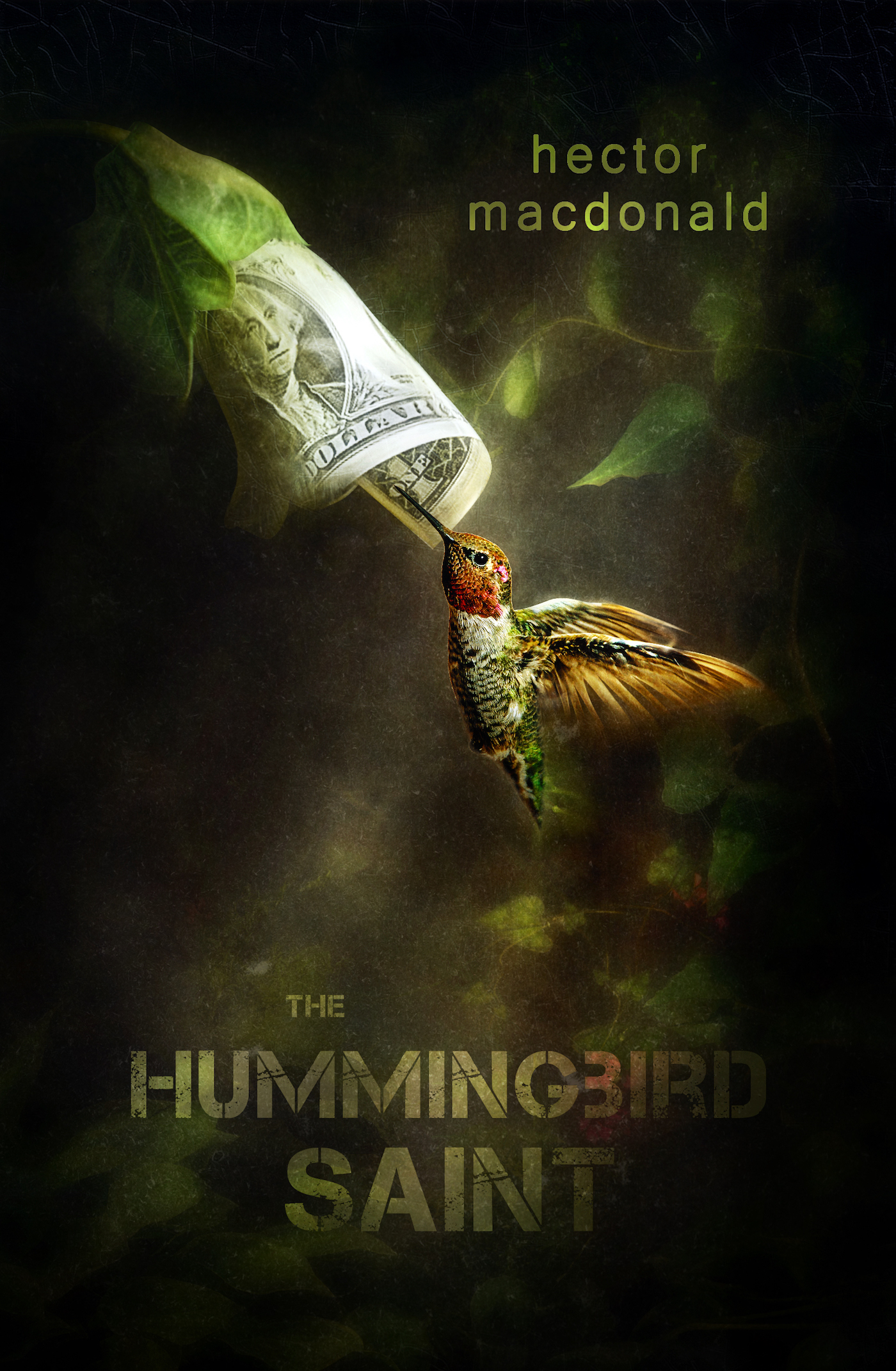 The Hummingbird Saint