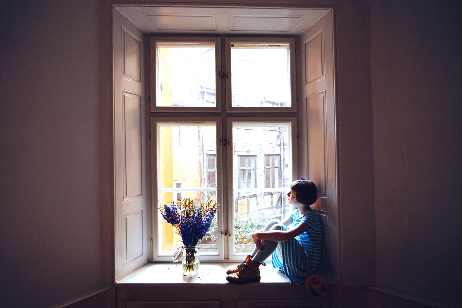 the window in the livingroom