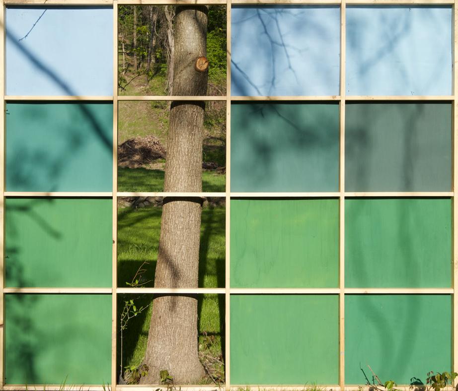 landscape with tree I.jpg