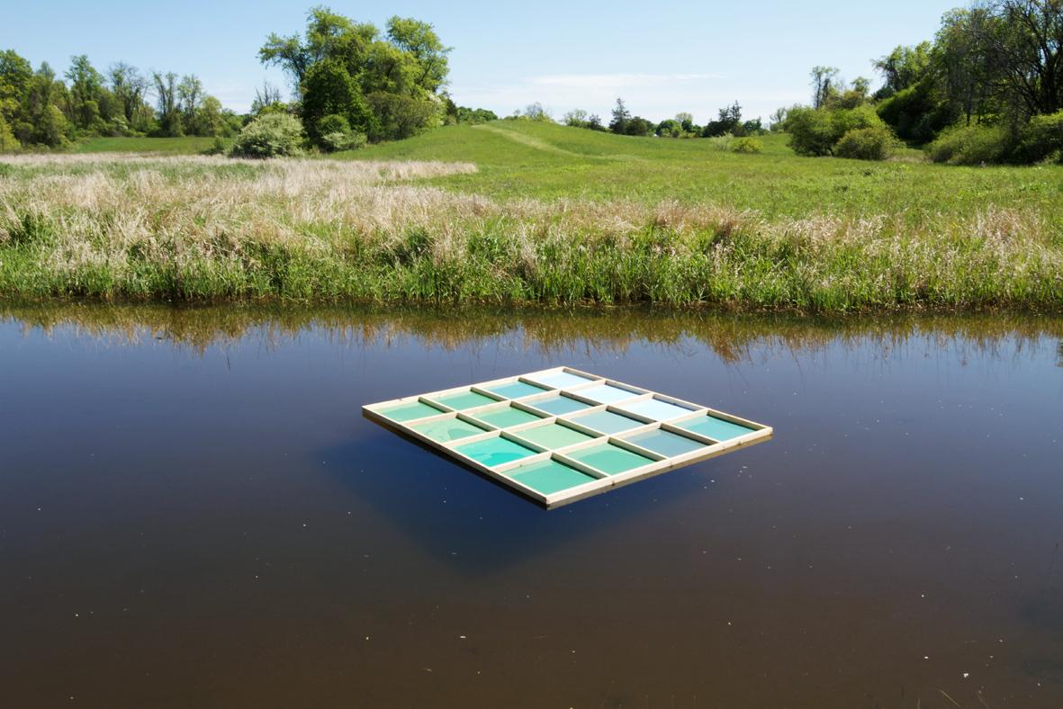 landscape takes a swim.jpg