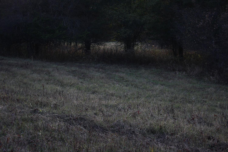 03_res108_meadowS.jpg