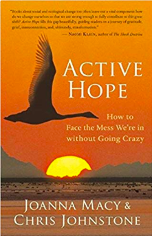 Active Hope: How to Face the Mess We're in without Going Crazy   by  Joanna Macy  (Author),  Chris Johnstone  (Author)