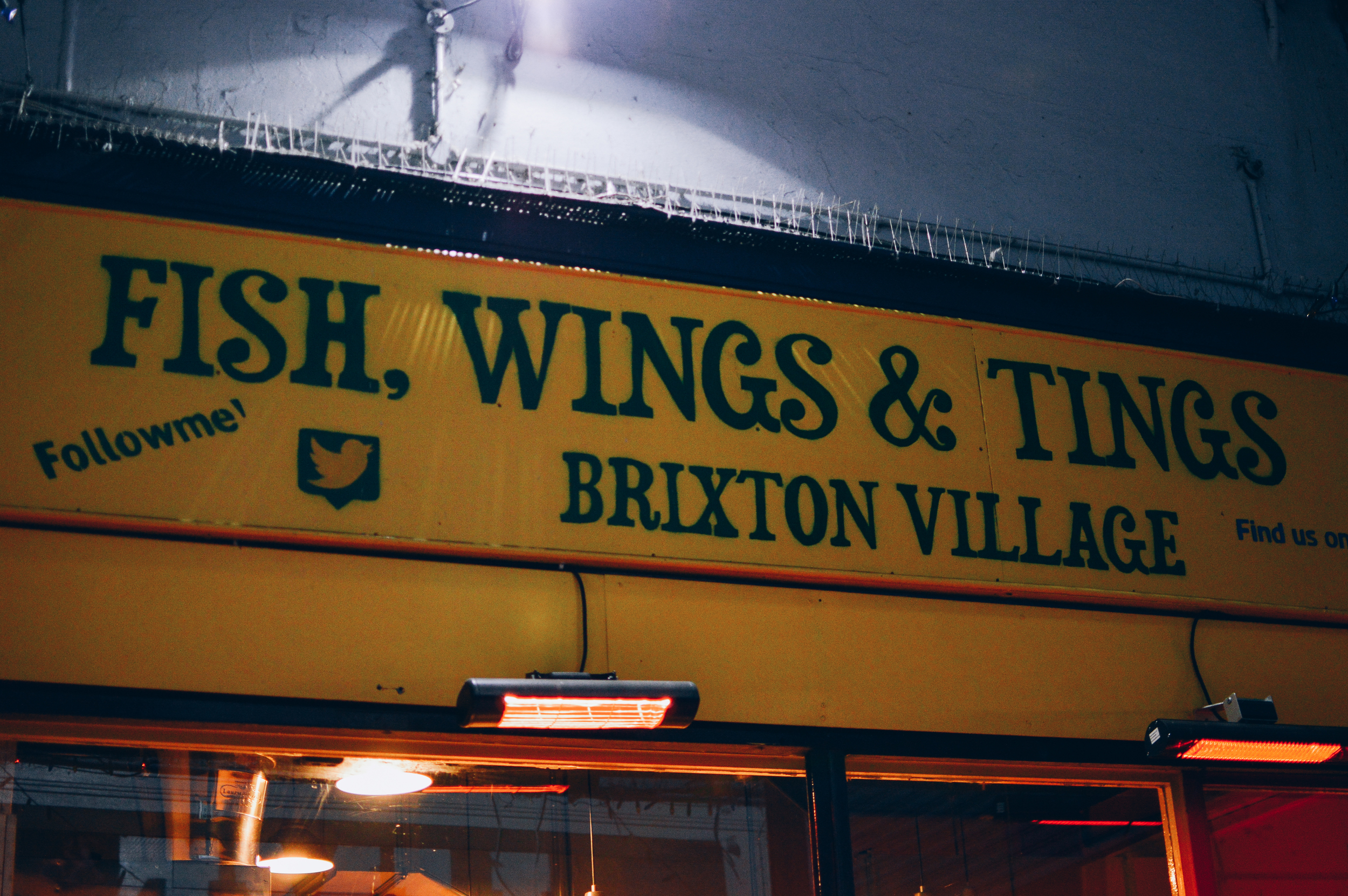 Fish Wings & Tings Voyage Collective Fi McCrindle