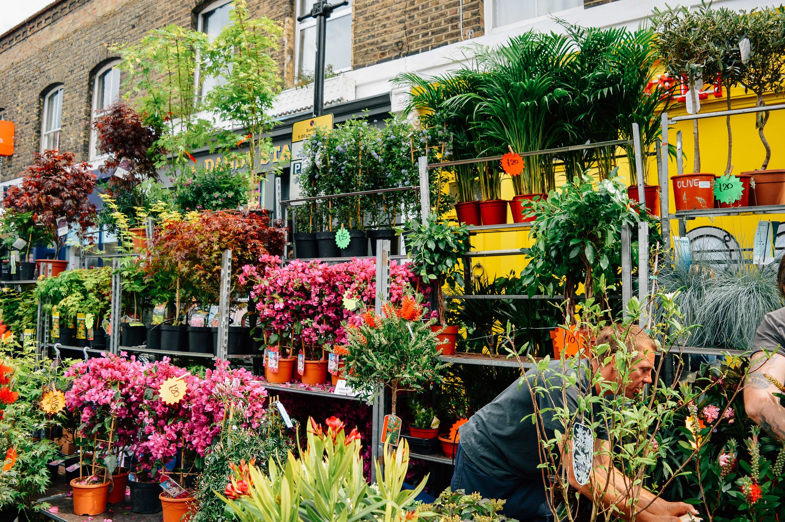 Columbia Road Flower Stall