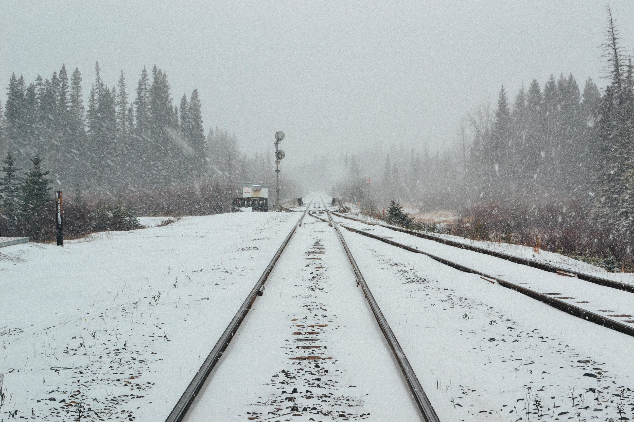 snow train tracks Banff Alberta Voyage Collective Billie Norman