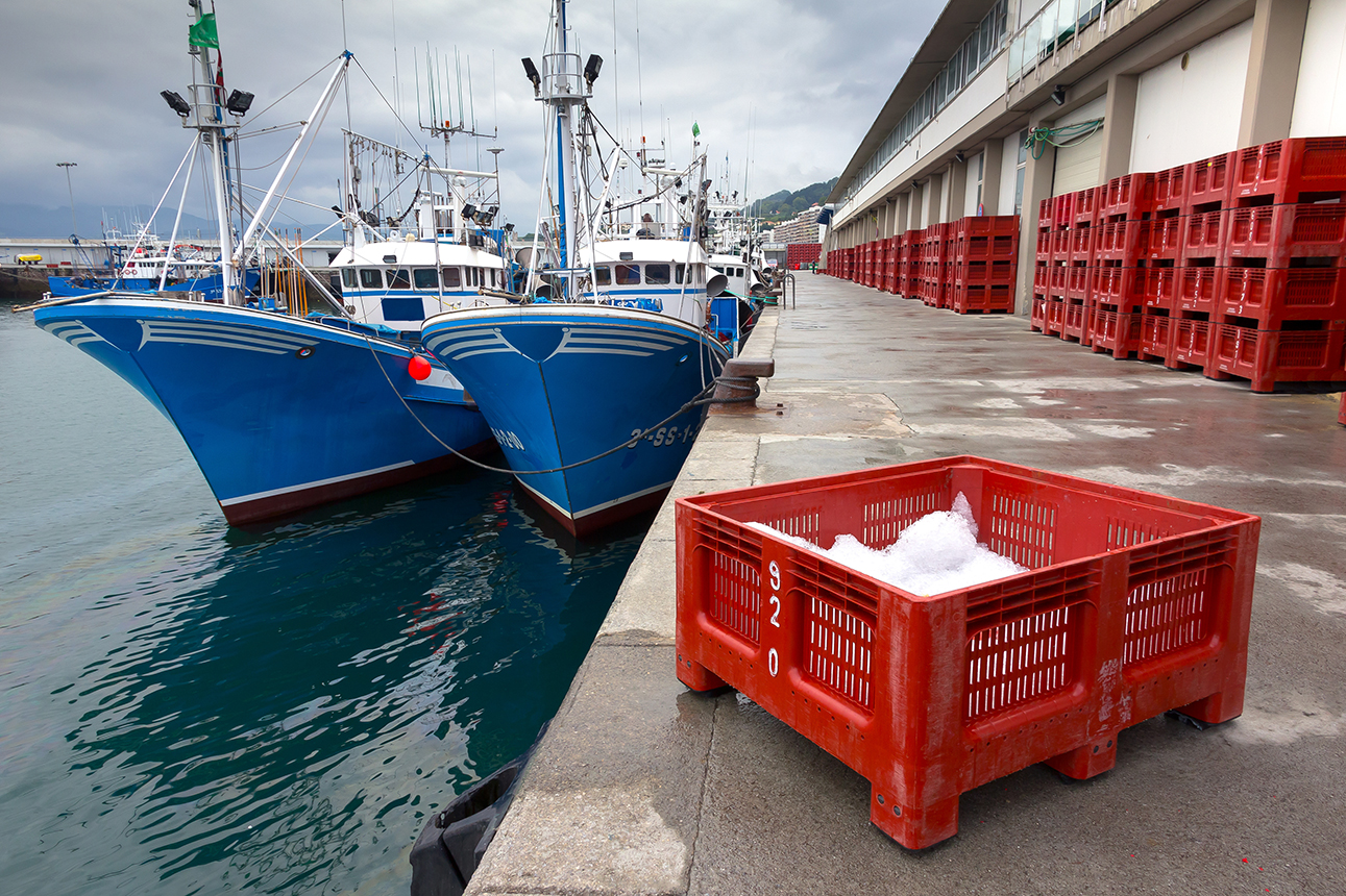 Paella lifestyle_Cultura euskadi 4.jpg