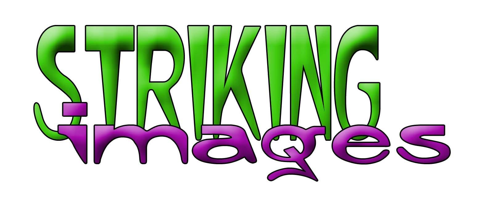 Striking Images Log#19891B5.jpg