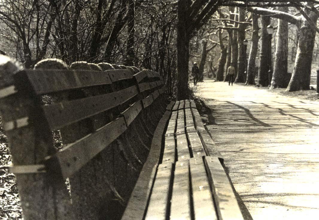long empty park bench copy.jpg