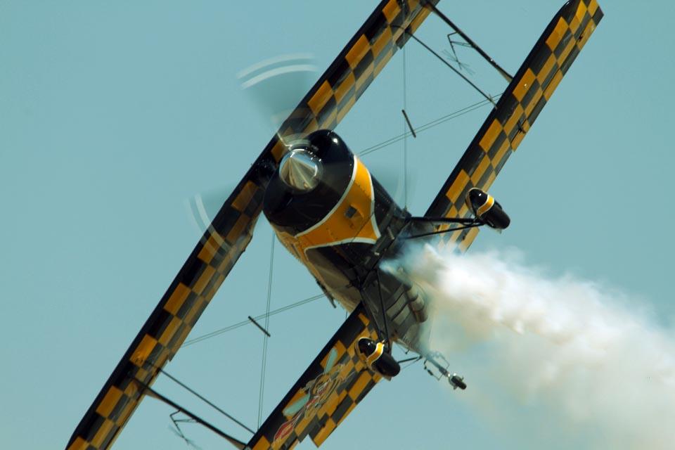 RumbleBee-Flight2grn.jpg