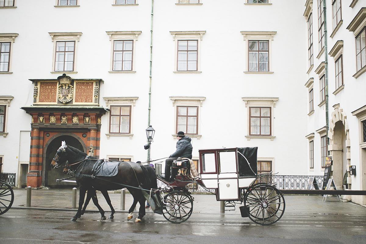 Vienna_102.jpg