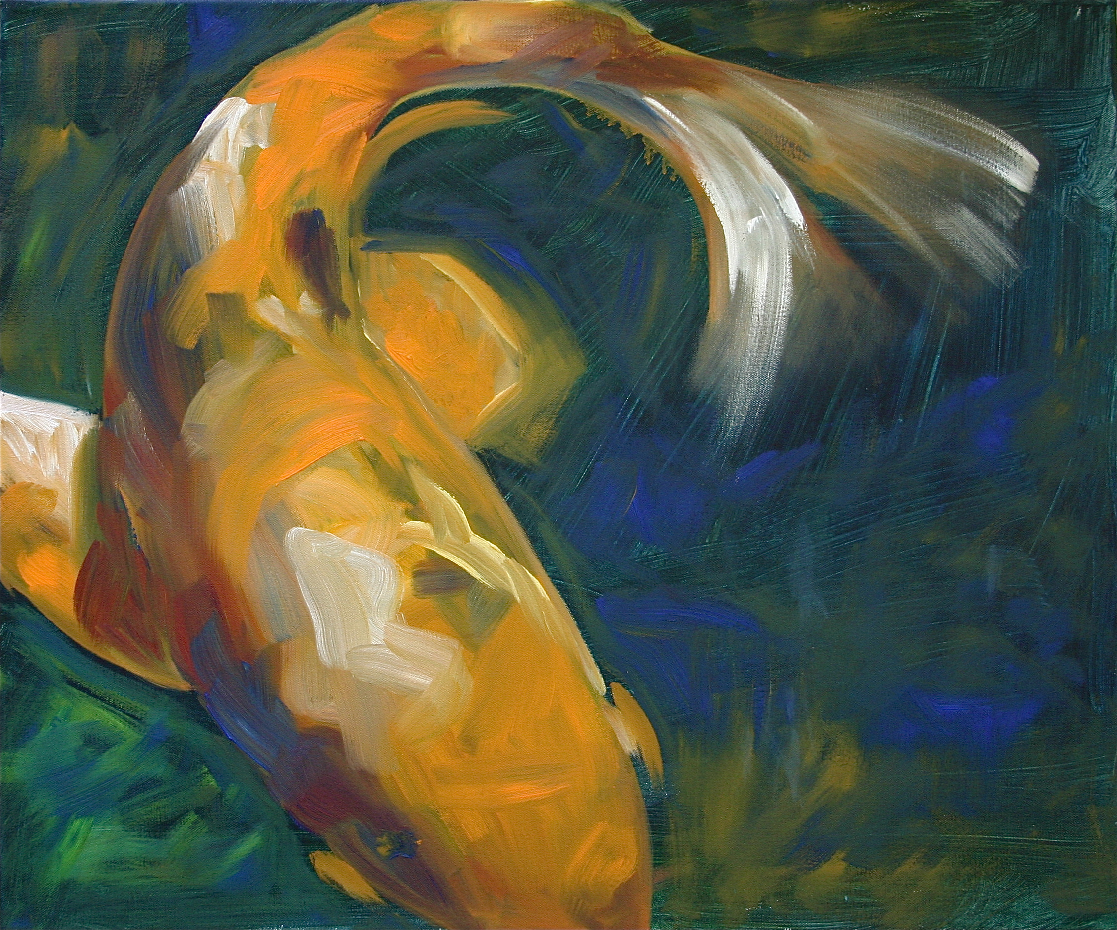 Koi in Motion