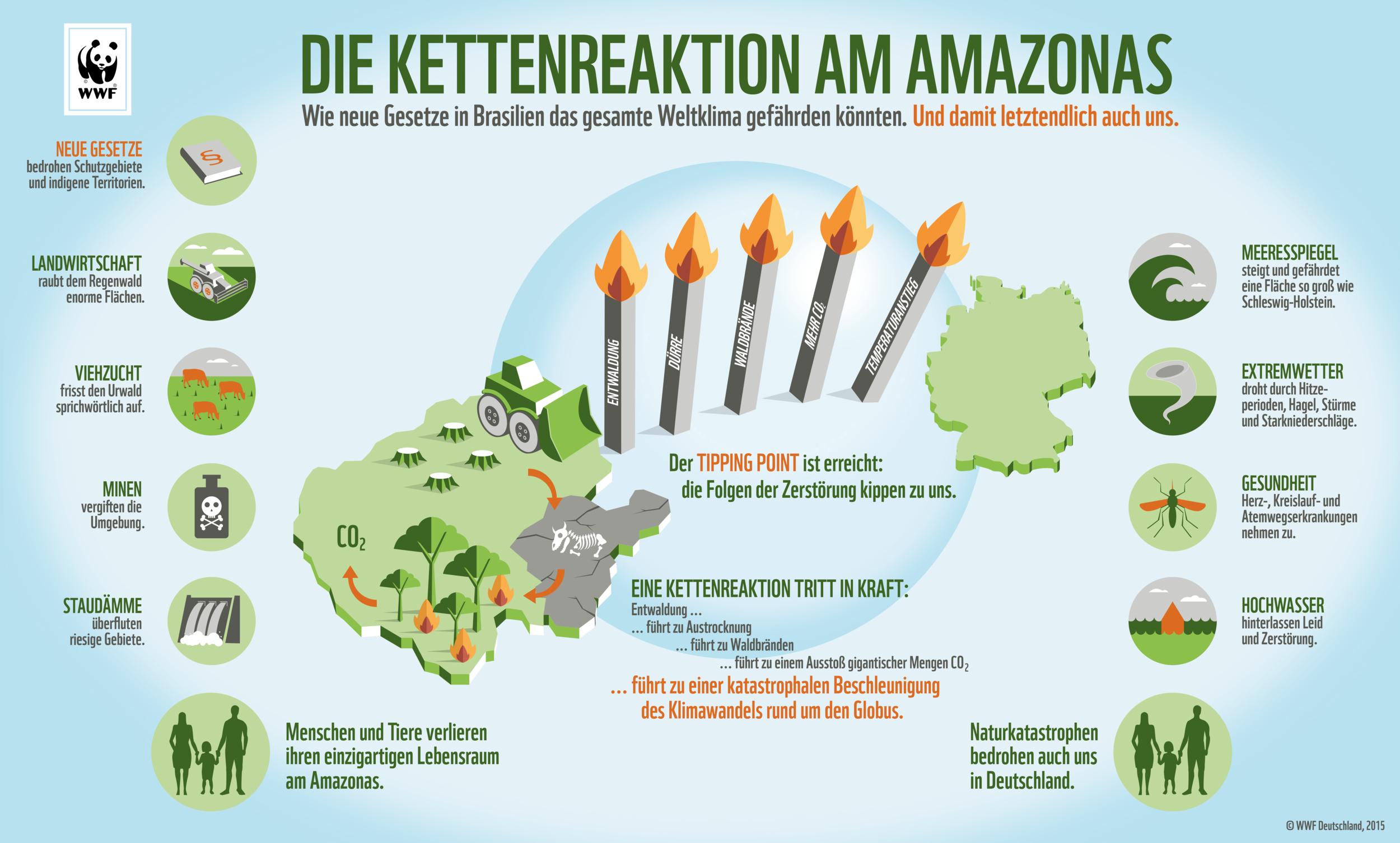 Die-Kettenreaktion-am-Amazonas-Infografik.png