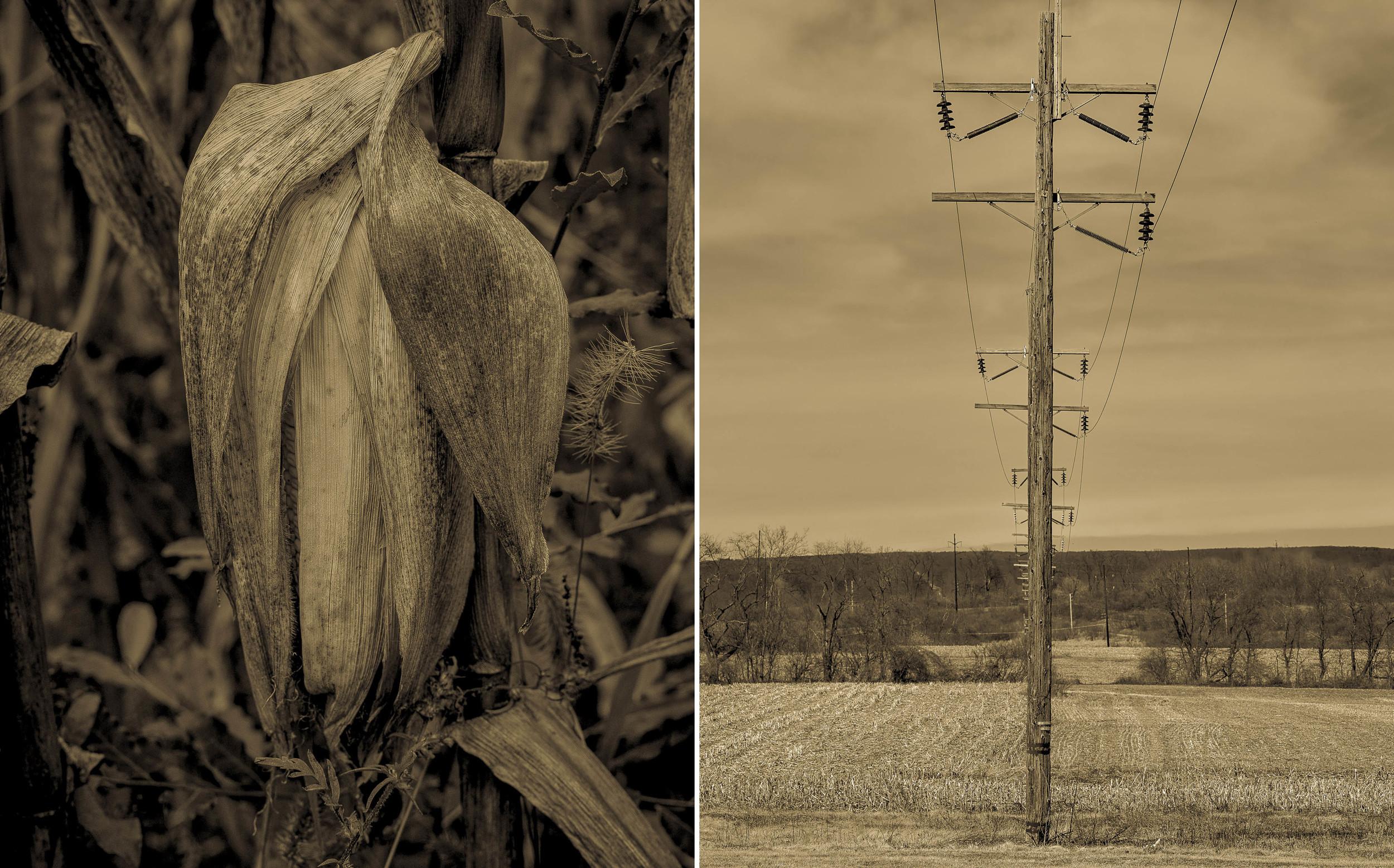 Derek Johnson Photography