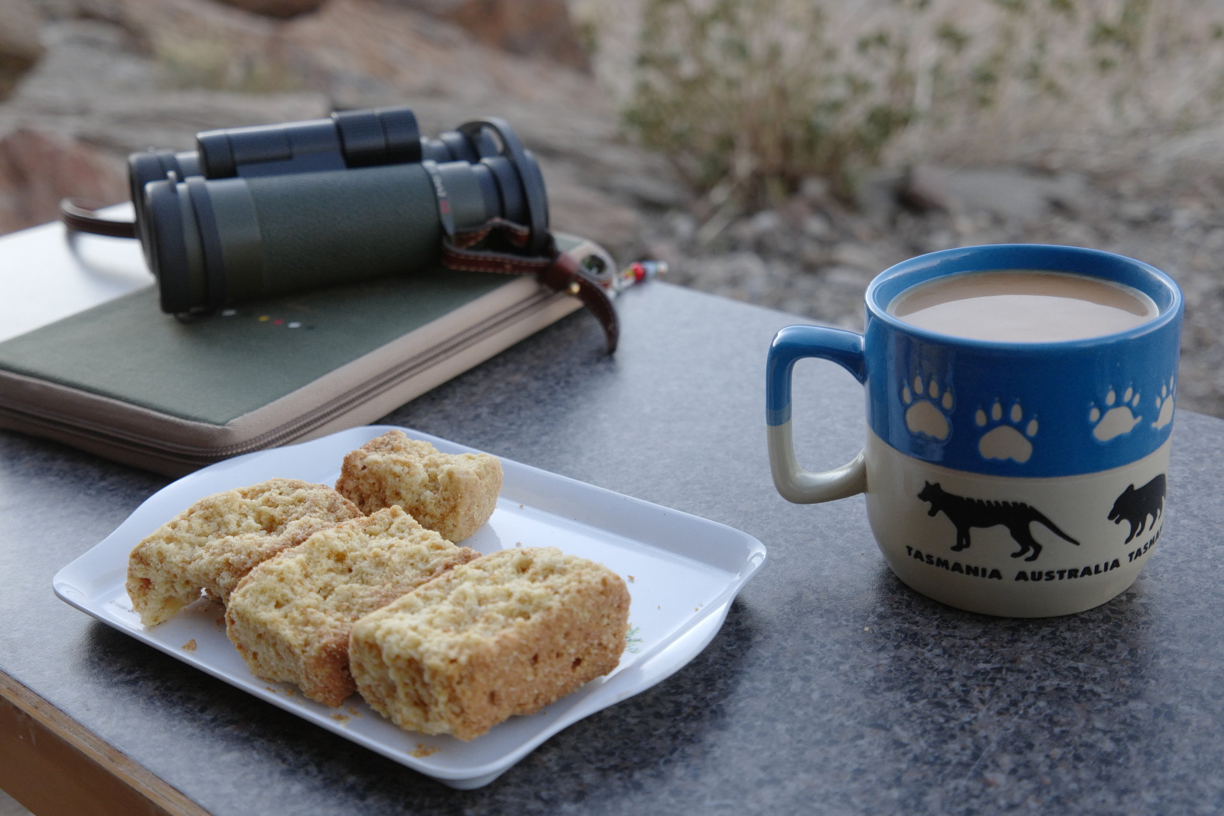 Coffee and rusks.jpg