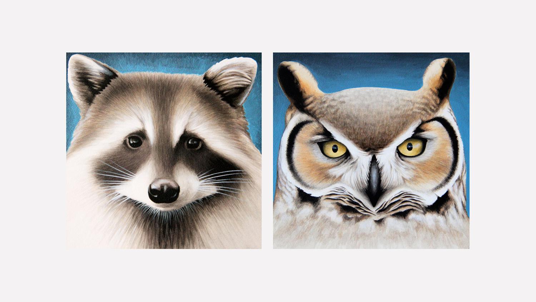 "Raccoon. Owl. (SF Residents series)  acrylic on panel 6x6"""