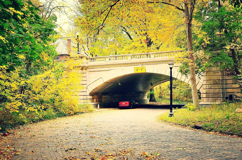 Iuka Ravine Bridge