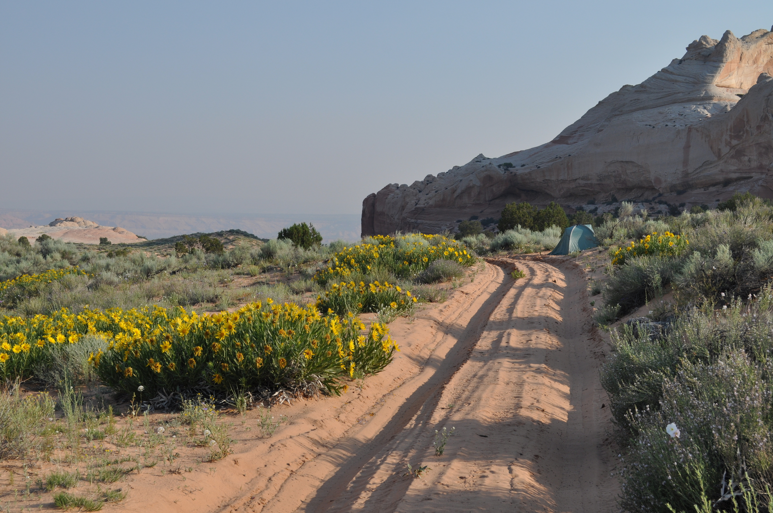 A typically incredible solitary camping spot while exploring the national treasures protected by the BLM
