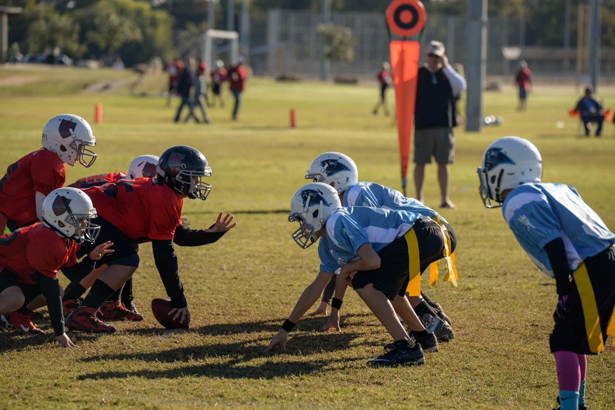Panthers Flag Football 20141108.jpg
