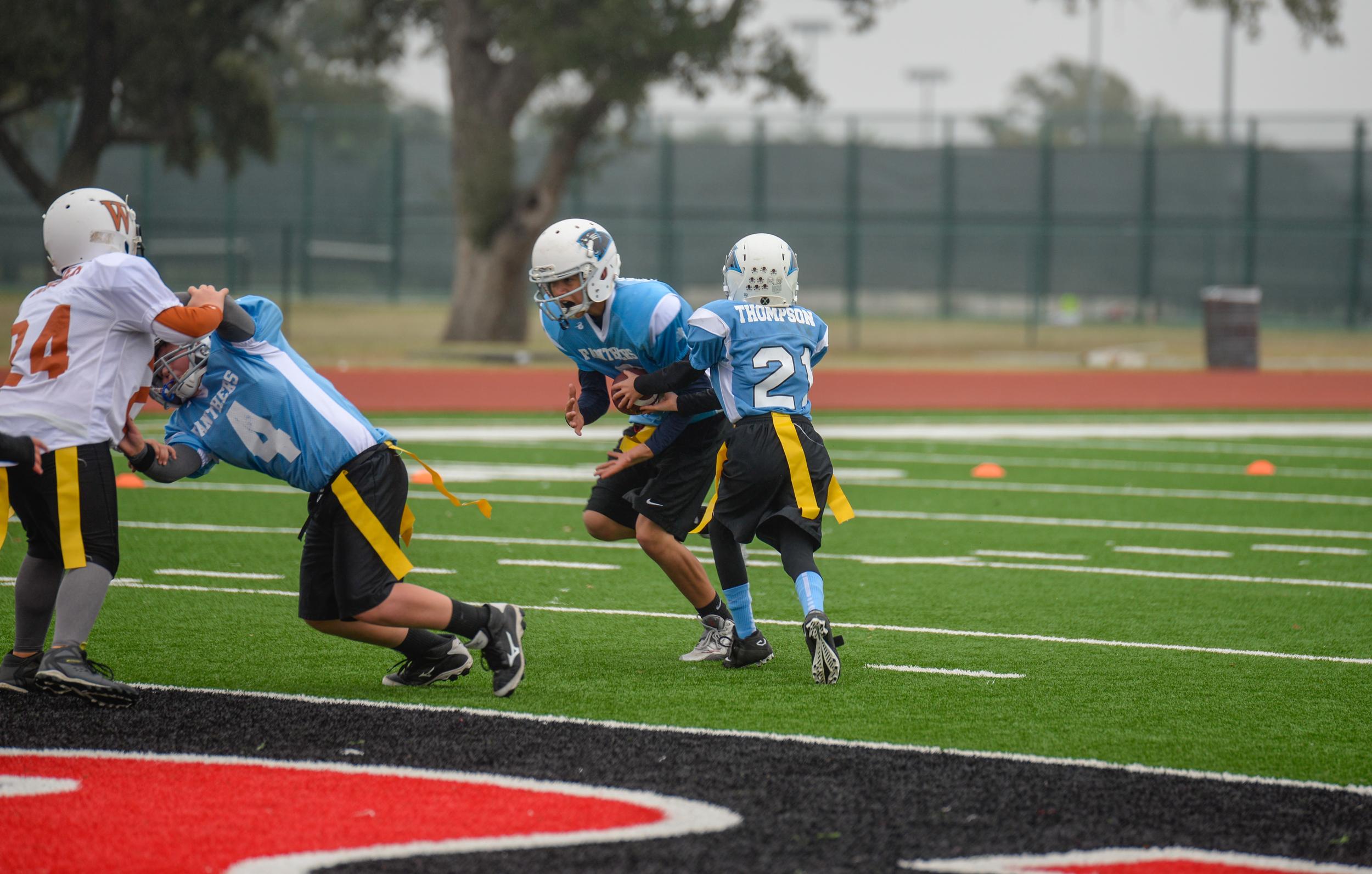 Panthers  November 15, 2014-5.jpg