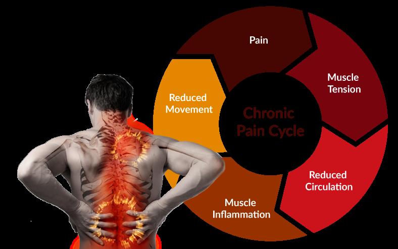 back-pain-cycle-bigger.png