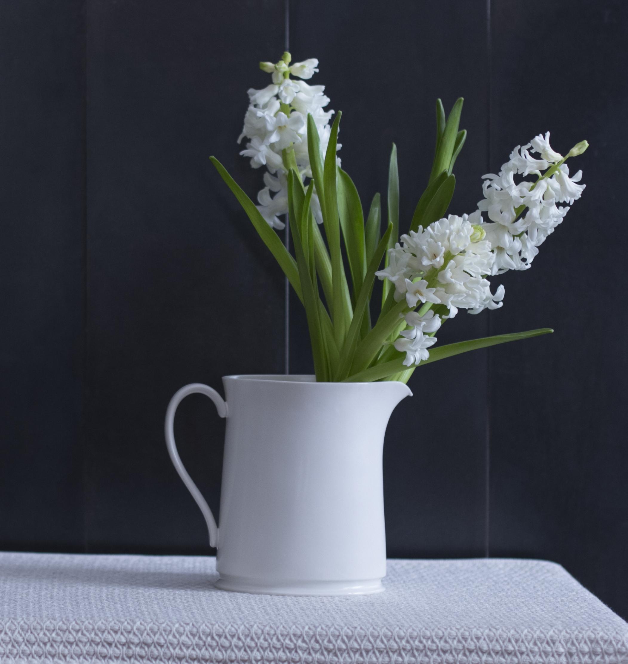 rikumo_february_flower