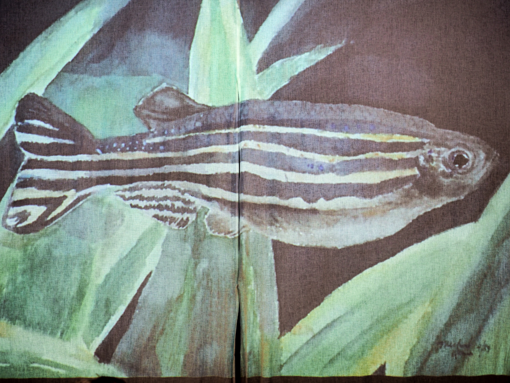 Impressions of Nature - Japanese Gyotaku Fish Printing-3.jpg