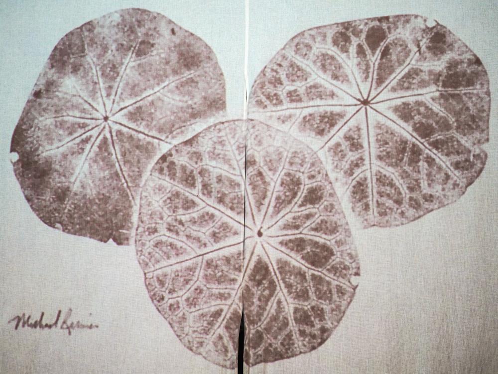 Impressions of Nature - Japanese Gyotaku Fish Printing-6.jpg