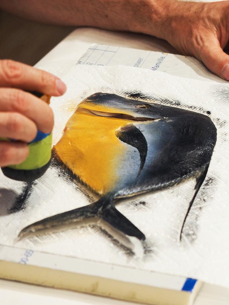Impressions of Nature - Japanese Gyotaku Fish Printing-18.jpg