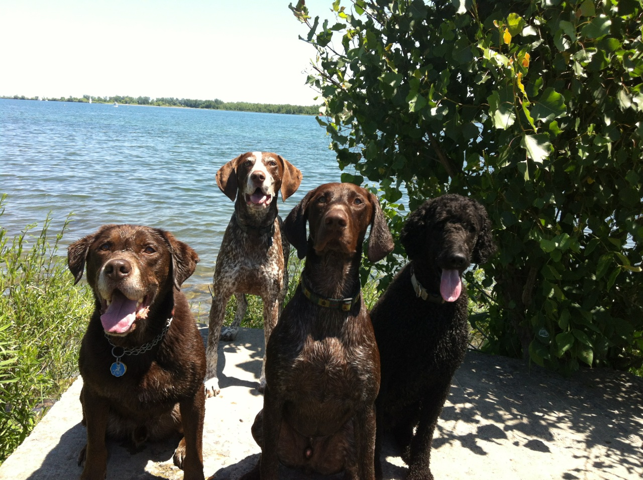 C harlie and his buddies at the beach...
