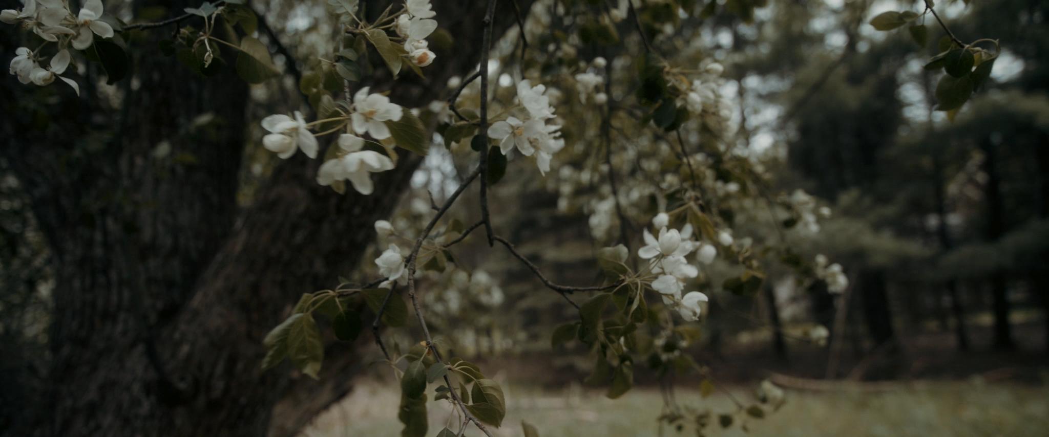 HAVENS_Wedding_Film.00_06_10_14.Still066.jpg
