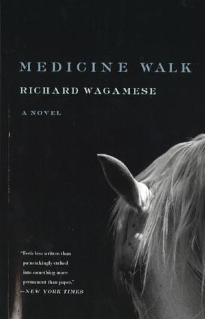 2 medice walk.jpg