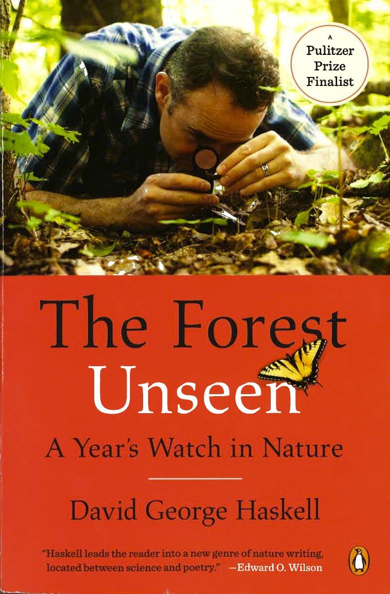 3 forest unseen_001.jpg