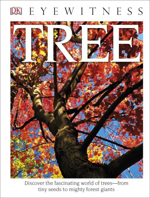 5 dk tree.jpg
