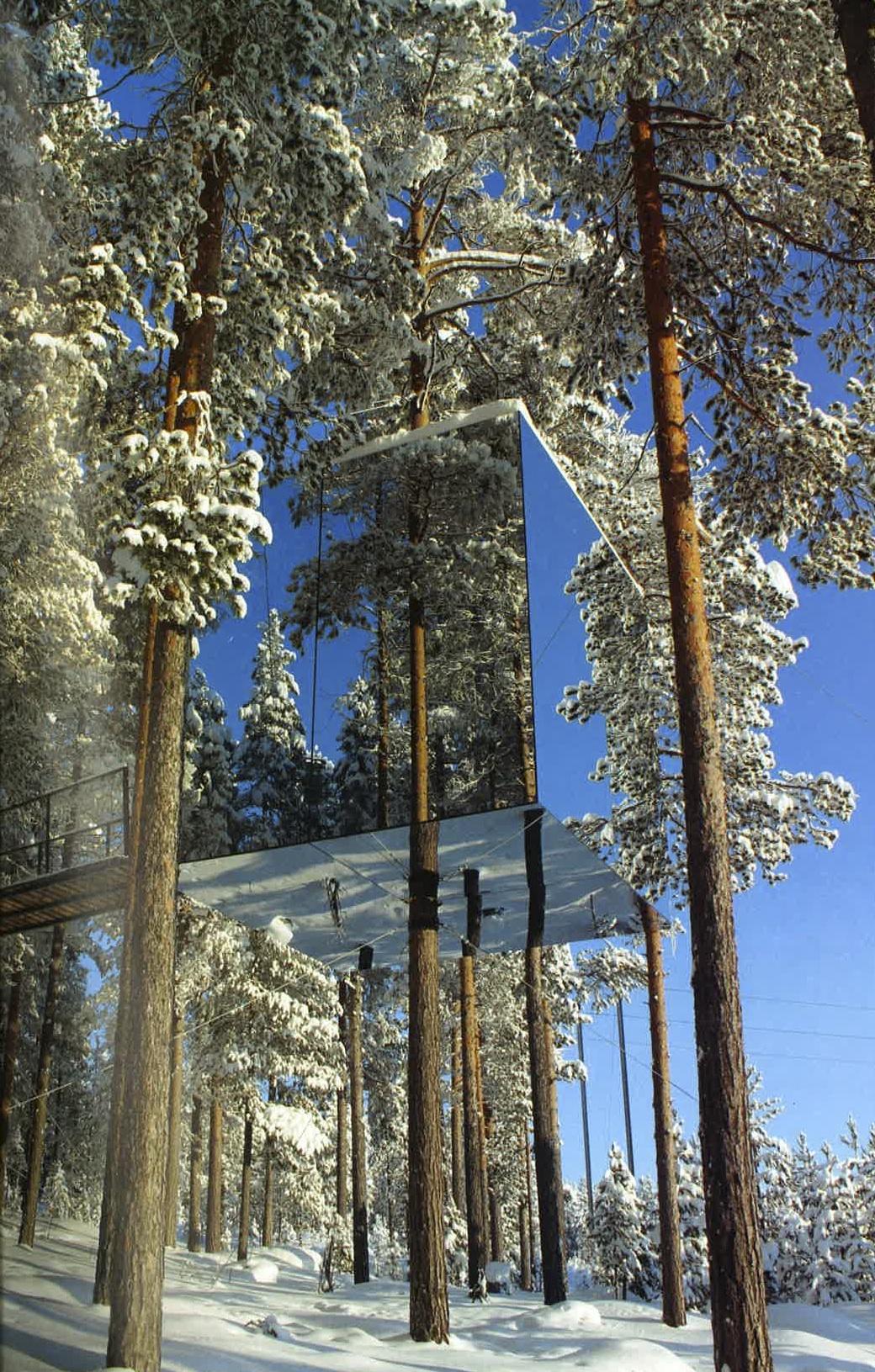 6 glass treehouse.jpg