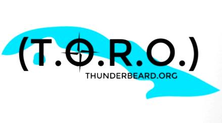 thunderbeard_toro_500px.png