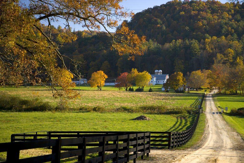 Reeb-Ranch-Entrance-Shoals-Farm-Road.jpg