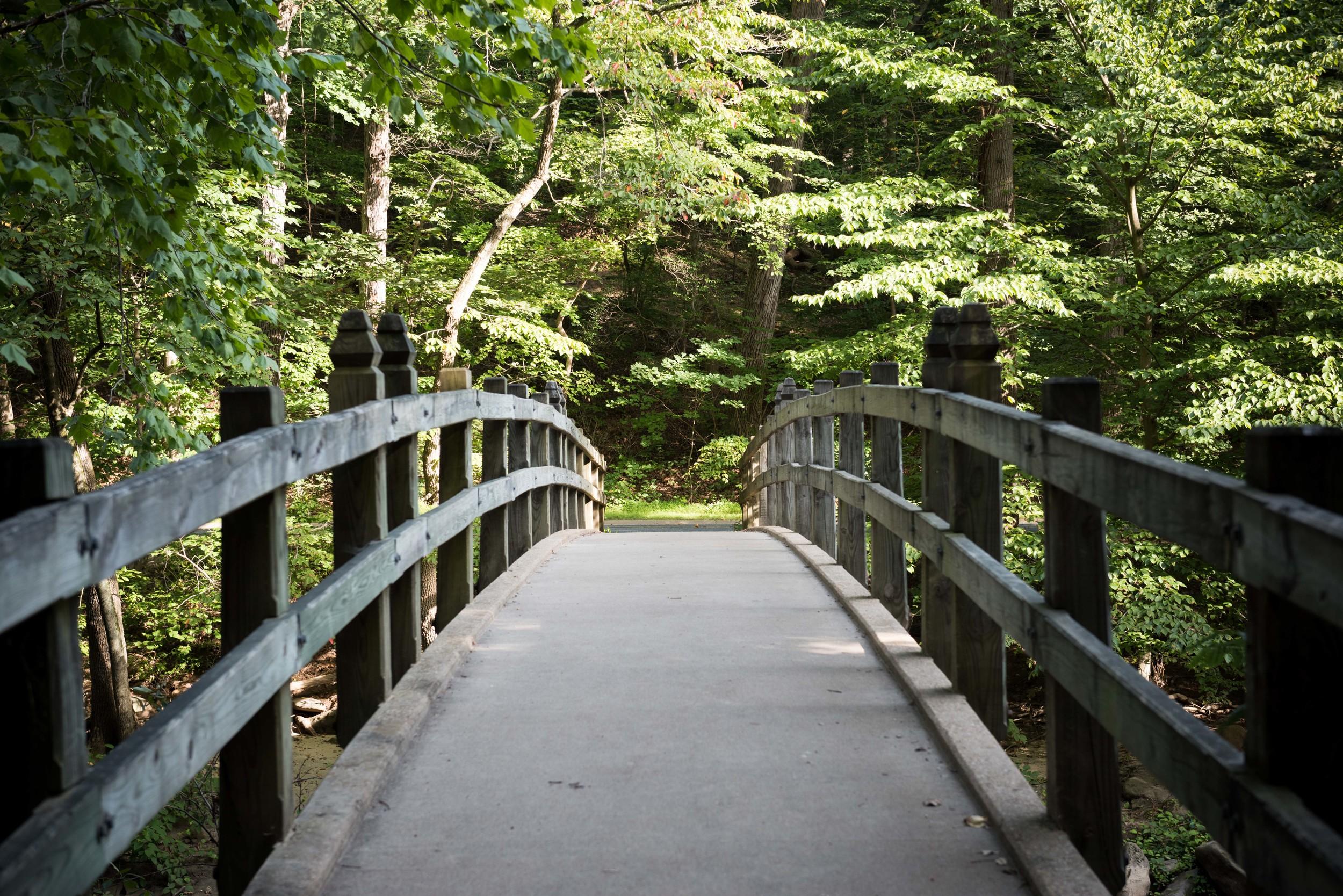 rock-creek-park-washington-dc-3