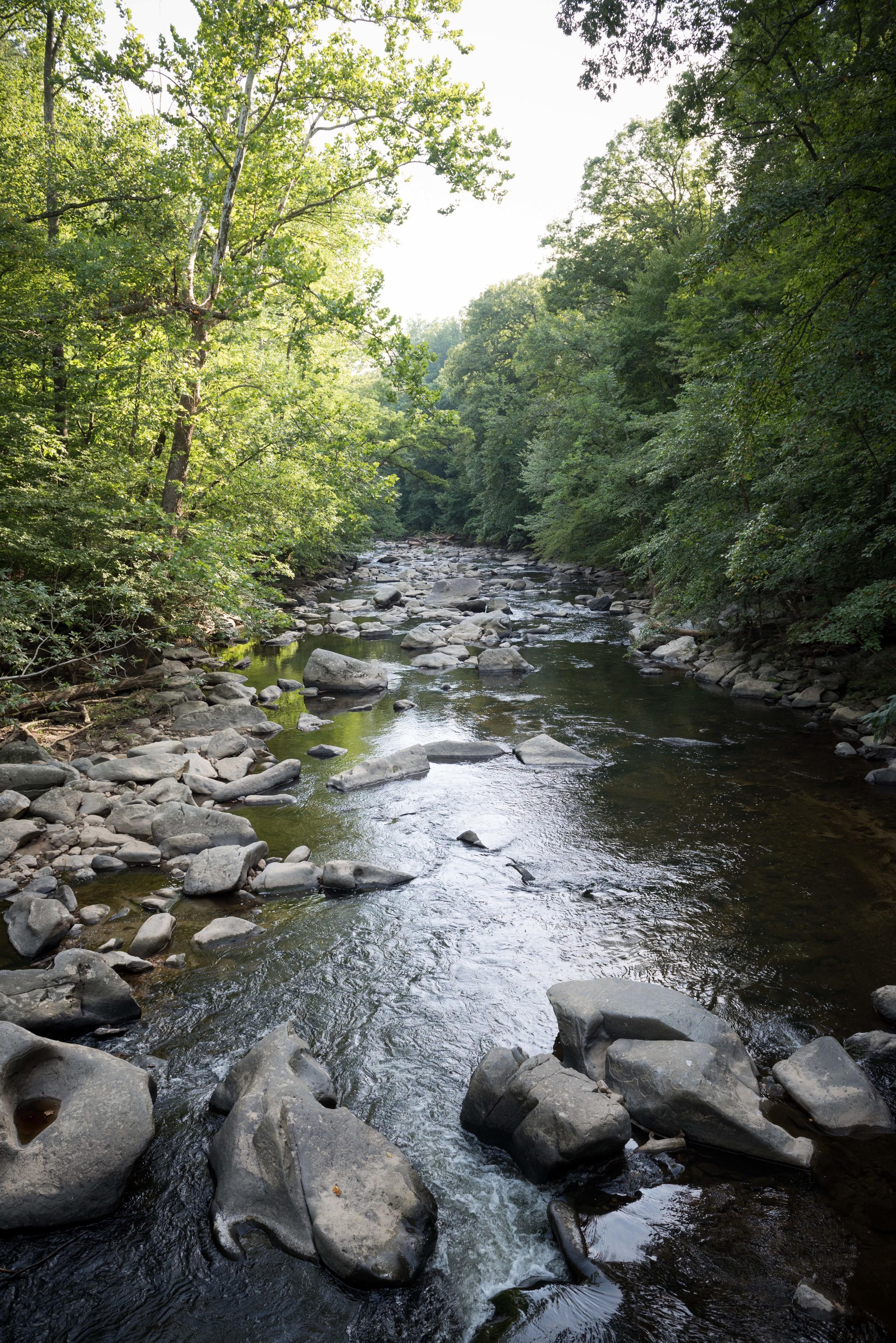 rock-creek-park-washington-dc-4